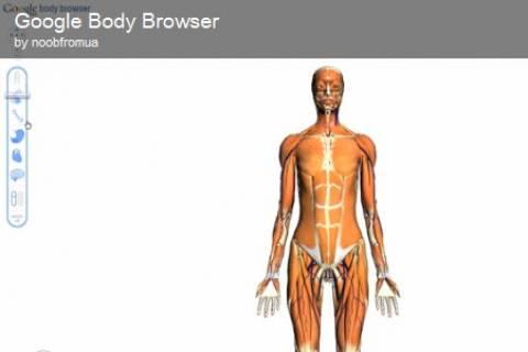 Εξερευνήστε το ανθρώπινο σώμα μέσα από την Google