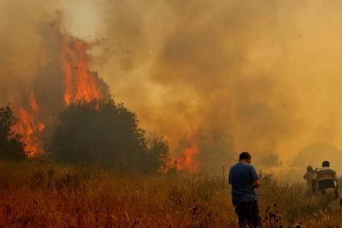 Μαίνεται η μάχη με τις φλόγες – Τεράστια οικολογική καταστροφή