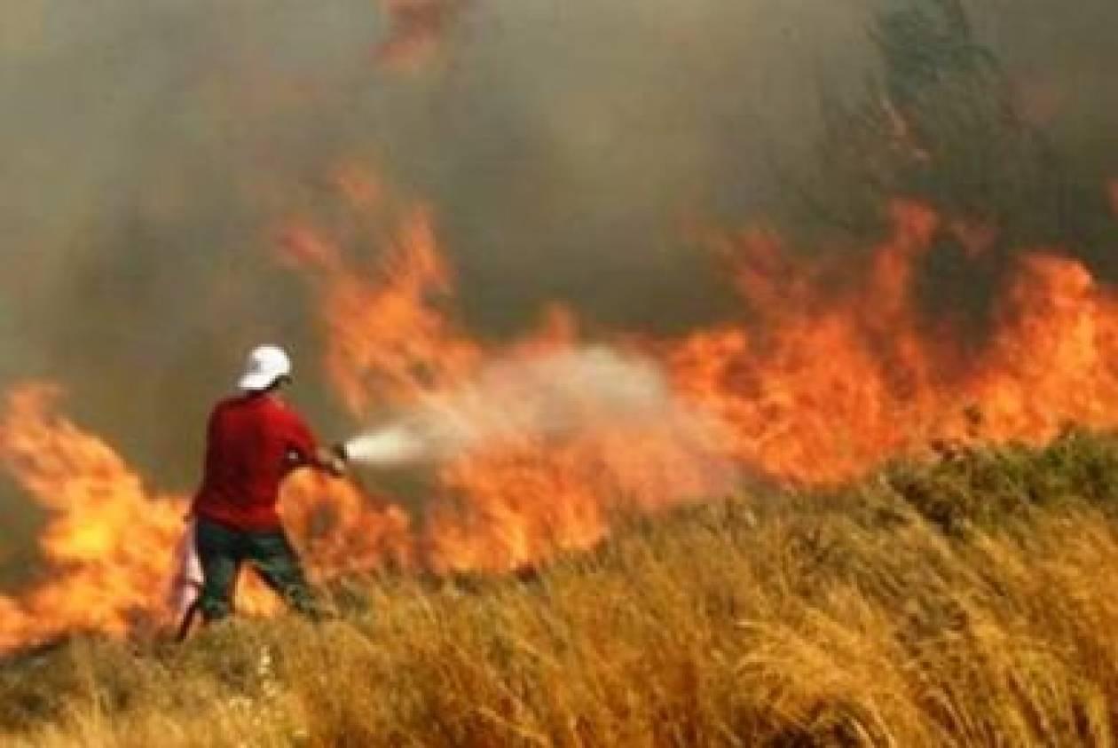 Υπό μερικό έλεγχο η φωτιά στην περιοχή της Υπάτης