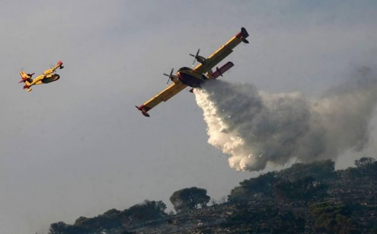 Πυρκαγιά στο δήμο Αμφίκλειας