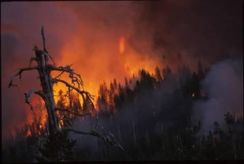 Μεγάλη φωτιά στην  Ίμπιζα