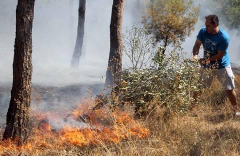 Φωτιά σε χαμηλή βλάστηση στην Αρτέμιδα