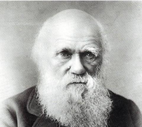 «Δαρβίνος και Δαρβινισμός»