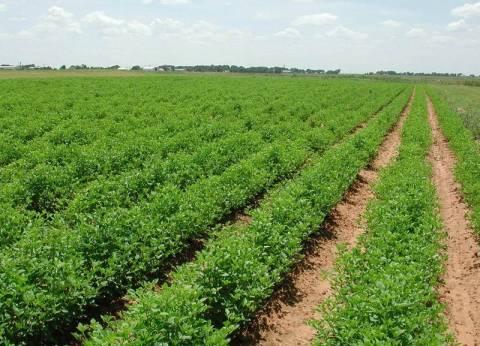 Από σήμερα η διάθεση αγροτικής γης, σε αγρότες και ανέργους