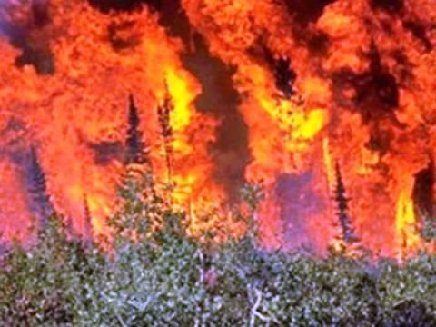 Πυρκαγιά στο Σέλινο Χανίων