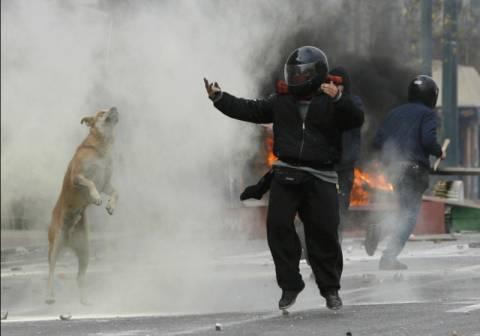 Λουκάνικος: Ο εθνικός σταρ της Ελληνικής κρίσης…