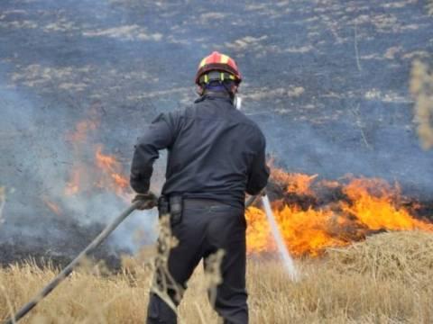 Σε εξέλιξη πυρκαγιά στο Δήμο Κύμης- Αλιβερίου
