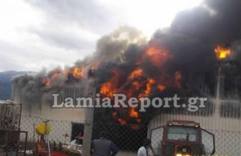 Φθιώτιδα: Μεγάλη πυρκαγιά σε αποθήκης καπνού