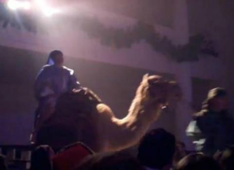 Οι τρεις μάγοι και η άτακτη καμήλα