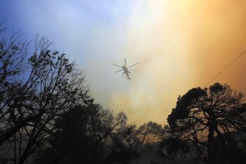 Δήμος Πεντέλης κατά Τουρκίας για τις πυρκαγιές του '95
