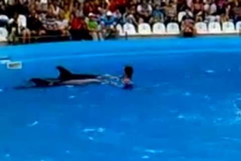Σόου με δελφίνια και ανθρώπους