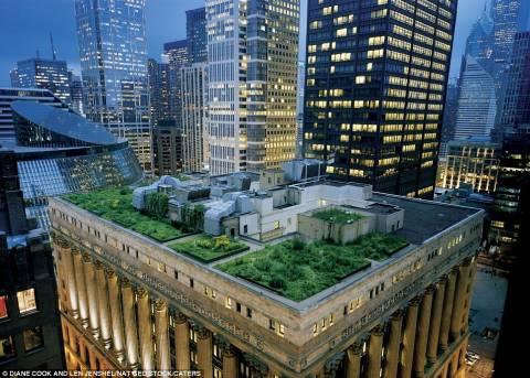 Πανέμορφοι κήποι σε οροφές κτιρίων