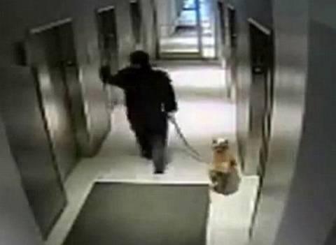 Μπήκε στο ασανσέρ κρατώντας το λουρί και άφησε τον σκύλο έξω