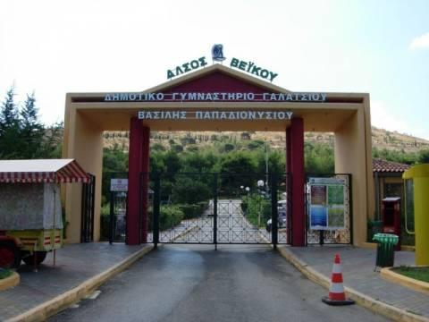 Κατεδαφίζονται οι αθλητικές εγκαταστάσεις στο Άλσος Βεϊκου