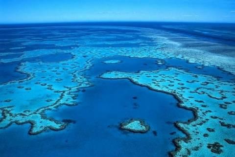 Οι ωκεανοί οξύνονται με γοργούς ρυθμούς