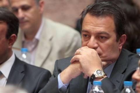 Ε. Στυλιανίδης: Στόχος μας η αυτοδυναμία