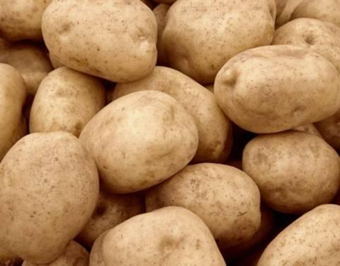 Εκατό τόνοι πατάτας στη Θεσσαλονίκη