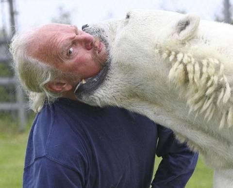 Η φιλία ενός ανθρώπου και μιας πολικής  αρκούδας