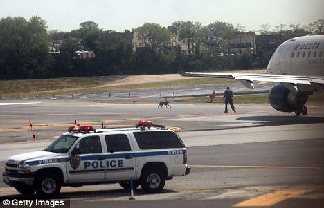 Ο σκύλος καθυστέρησε την πτήση