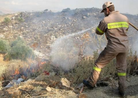 Τέσσερις εστίες πυρκαγιάς στη Δ. Μακεδονία