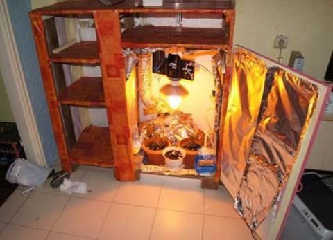 Aπίστευτο: Καλλιεργούσε χασίς στη ντουλάπα του