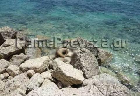 Πρέβεζα: Πτώμα σε αποσύνθεση βρέθηκε σε παραλία