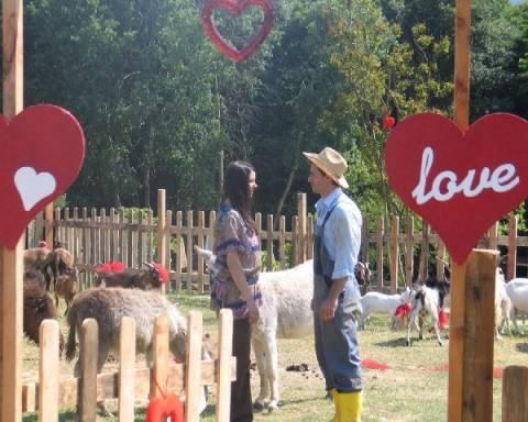 Μοιραίος Έρωτας: Ο Χαρούν γλιτώνει από τη σφαίρα του δολοφόνου
