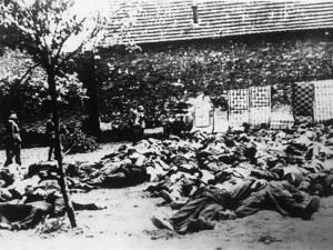 Μαύρη επέτειος: Σαν σήμερα έγινε η σφαγή στο Δίστομο (vid)