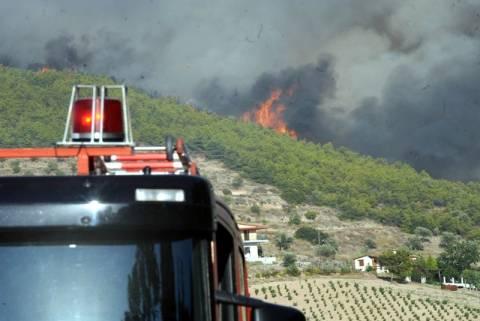 Τέσσερις συλλήψεις για τη φωτιά στην Κερατέα