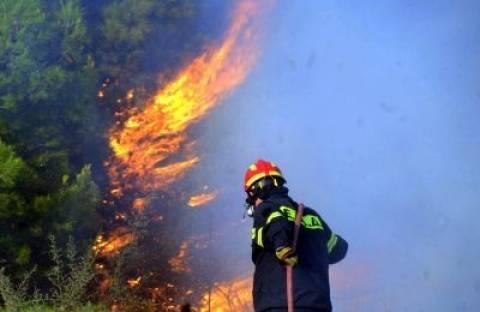 Ένας εποχικός Πυροσβέστης στη μάχη της φωτιάς στη Κύθνο!