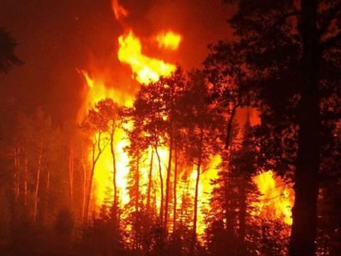Ποινική δίωξη για εμπρησμό από αμέλεια για τις φωτιές στην Αττική