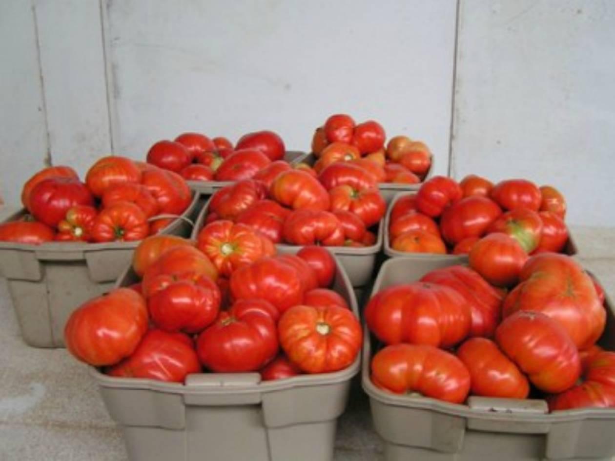 Ηράκλειο: Διανομή δωρεάν τροφίμων σε άπορους