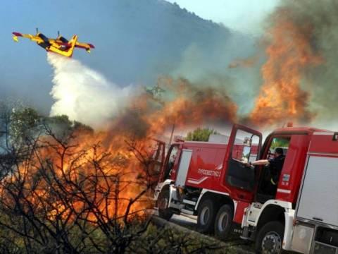 Υπό έλεγχο η φωτιά στην Κερατέα