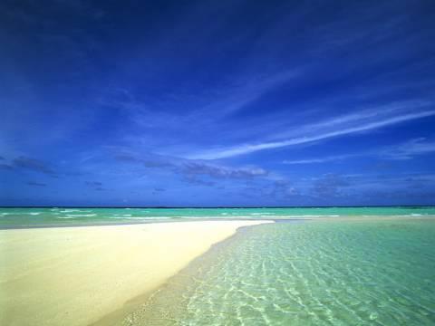 Υπάρχει τρόπος να καταλάβετε αν είναι η θάλασσα μολυσμένη;