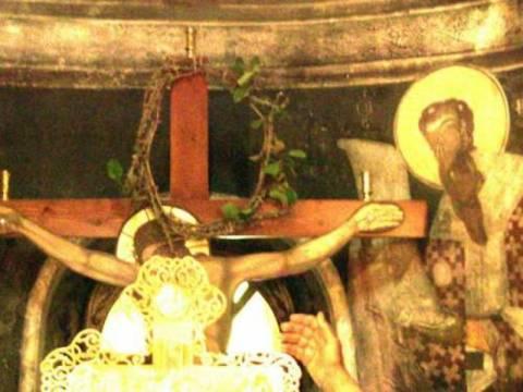 Άνθισε το ακάνθινο στεφάνι του Εσταυρωμένου Ιησού