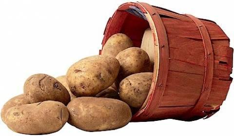 Μυτιλήνη: Πατάτες και καρπούζια σε τιμές φτώχειας...