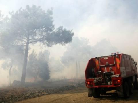 Εύβοια: Mεγάλη φωτιά στην Ιστιαία