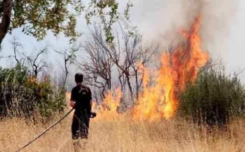 Πυρκαγιά σε δασική έκταση στην Κερατέα