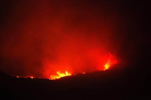 Πυρκαγιά σε αγροτοδασική έκταση έξω από την Πάτρα