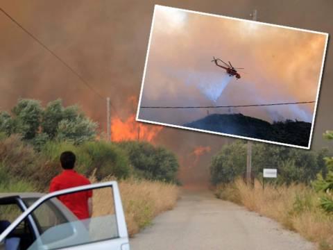Δίπλα από τις αυλές των σπιτιών περνάει η φωτιά στην Αχαΐα