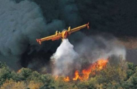 Σε εξέλιξη πυρκαγιά στην Ιστιαία