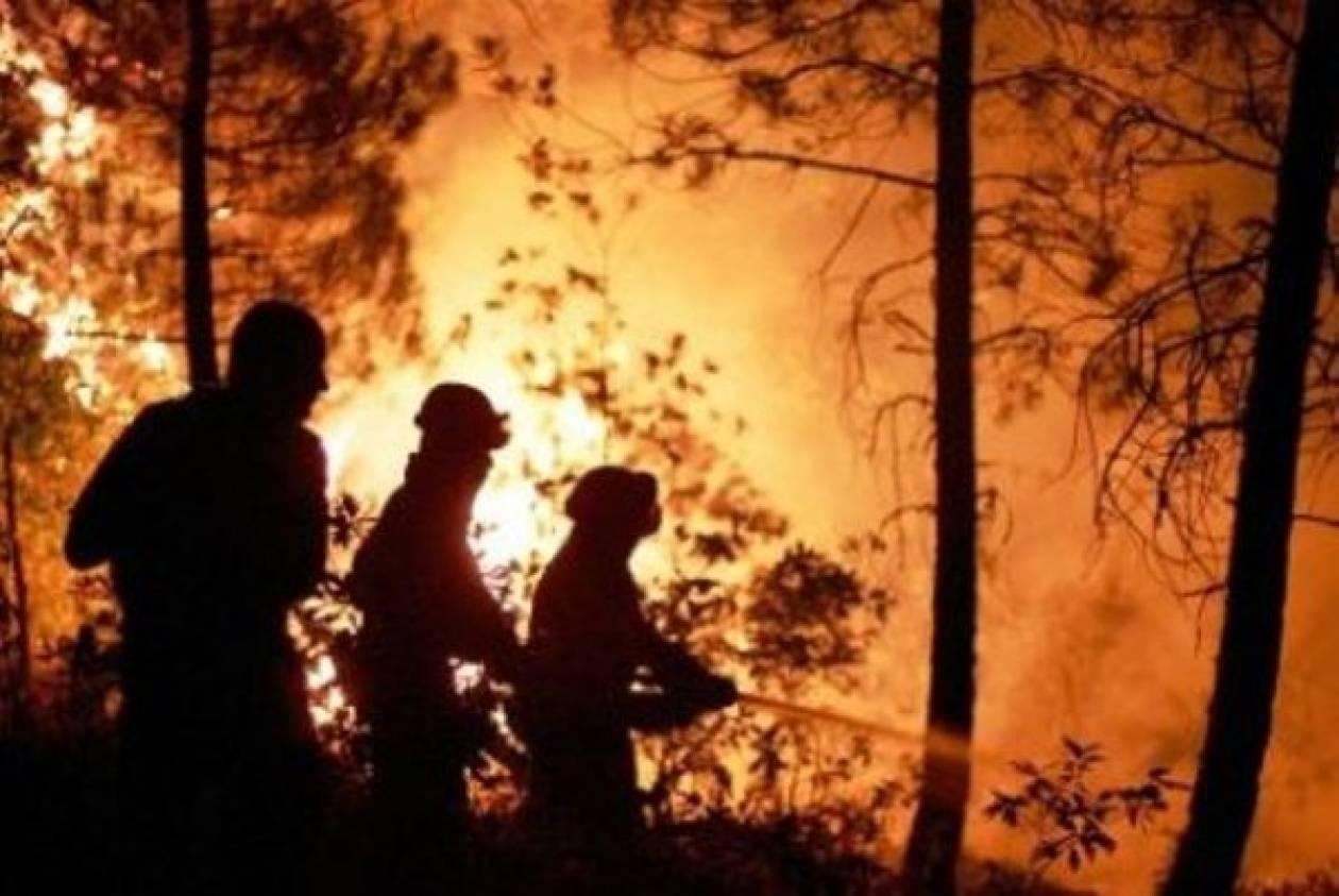 Υπό μερικό έλεγχο οι φωτιές σε Δράμα, Λευκάδα και Εύβοια