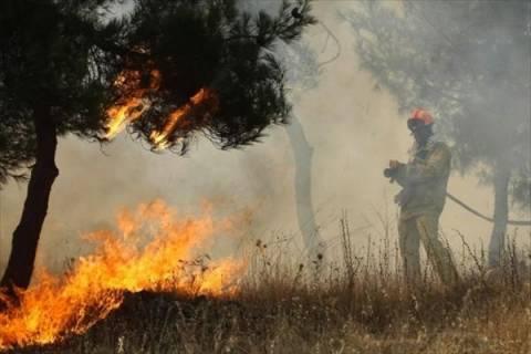 Σε εξέλιξη πυρκαγιά στο Βαρικό Φλώρινας