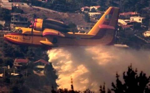Υπό μερικό έλεγχο η πυρκαγιά στην Αχαΐα