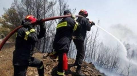 Υπό μερικό έλεγχο η πυρκαγιά στην Κορινθία