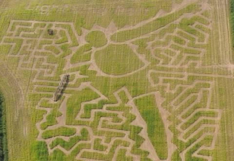 Ολυμπιακοί Αγώνες 2012: Ο Γιουσέιν Μπολτ έγινε «αγρογλυφικό»