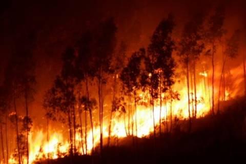 Σε εξέλιξη νέα φωτιά στη Ζάκυνθο