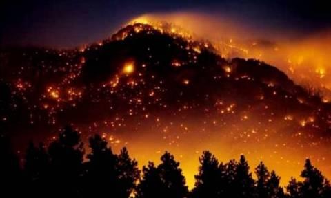 Υπό μερικό έλεγχο η φωτιά στην Έδεσσα