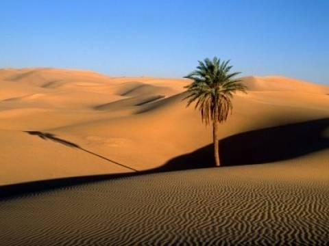 Η Σαχάρα… δεν είναι έρημος!
