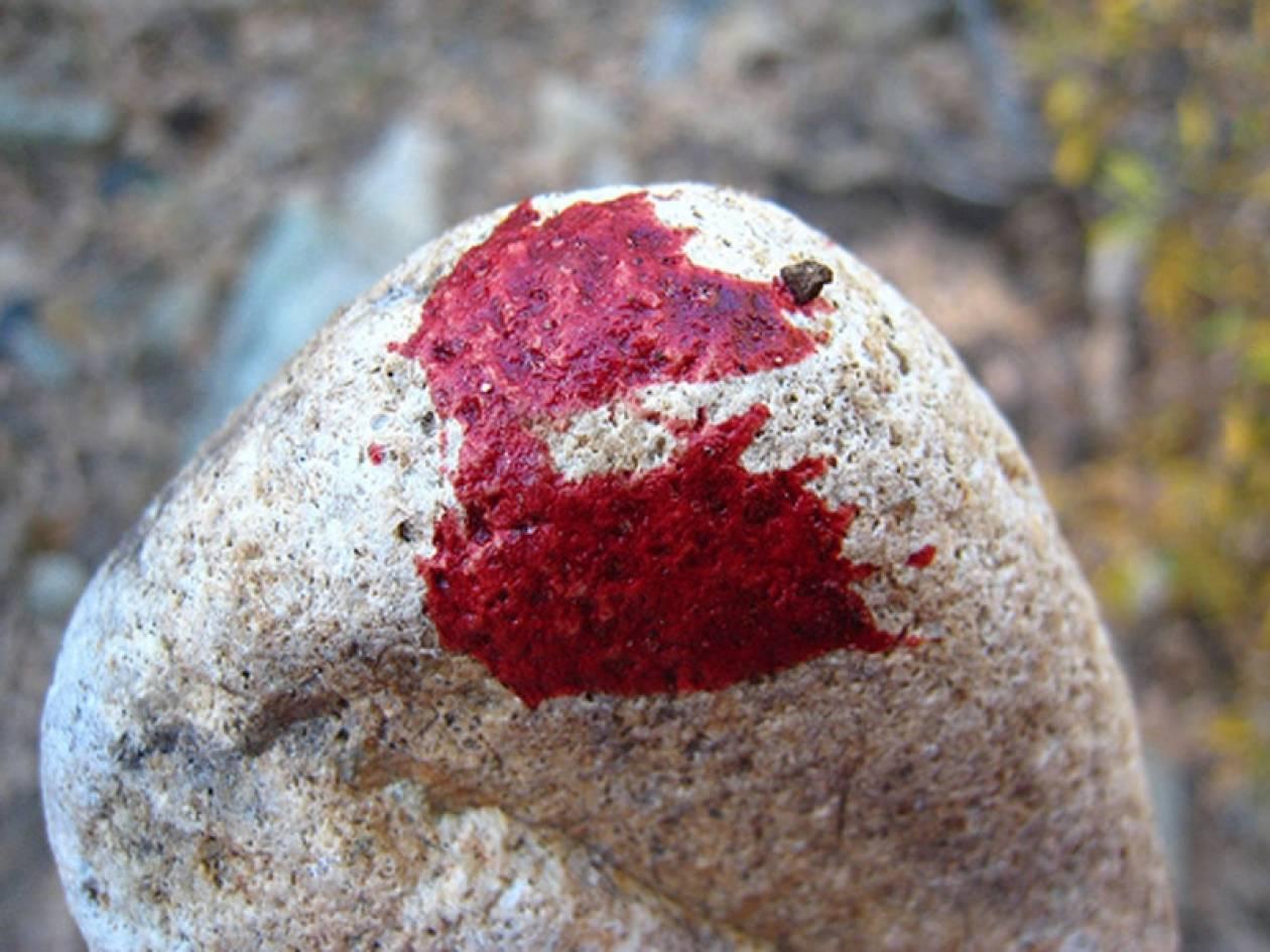 «Δράκος» της Πάρου: Την χτύπησα στο κεφάλι με μια πέτρα πέντε κιλών